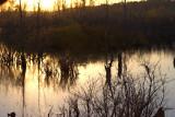 IN_Lake12.jpg