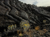 jordan craters lava