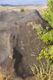 petroglyph, owyhee river