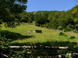 Detalle del paisaje