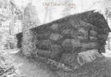 Old Timers cabin II endpaper.jpg