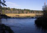 Headwaters in fall copy.jpg