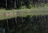 Mary Lake reflection DB 50 copy.jpg