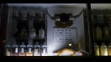 The Chinese Pharmacy (P100_89.jpg)