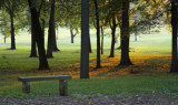 Nauvoo Grove: Come, Sit, Rest