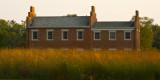 Prairie Grass in Nauvoo