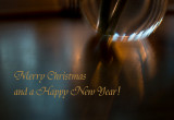 I wish you all a Merry Christmas and a peaceful 2009 : )