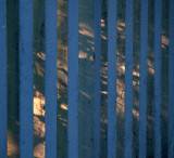 Fence and shadows