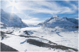 Columbia Icefields .jpg