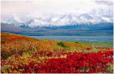 Autumn Alaska.jpg