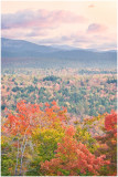 W.VA. autumn hillside.jpg