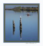 Pelican & Rowers.jpg