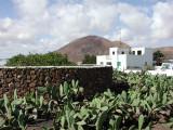 in village Guatiza