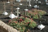 Cemeteries in Spain