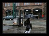 Bergen,effect of wind&rain