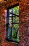 Looking Out The Old Porter House