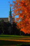 Autumn At St Joe's