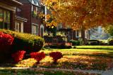 Allenhurst Road Autumn