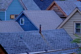 Roofs Of Newton Street