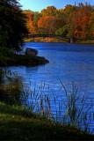 Albany_065.JPG
