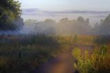 Knox Trail At Dawn
