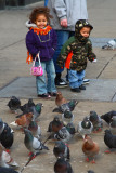 Kids With Pigeons