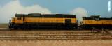 DSC_0417-1024X768.jpg