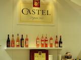 Groupe Castel Vinisud 2008