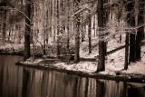 Alabama, snowy day (black & white)