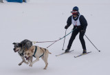 Anchorage Skijoring, 13 February, 2011