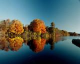 Locustville Pond