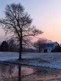 Pond, Tree, Barn