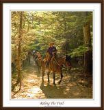 IMGP5986w_Riding the Trail.jpg