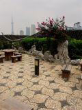 China2005-1.jpg