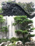 China2005-15.jpg