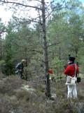 Typisk nordisk terräng