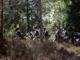 Ny ställning i skogen