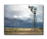 Desert CloudburstNipton, CA