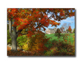 Fall Foliage & BarnGoffstown, NH