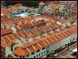 Bird eye's view of Chinatown