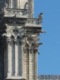 Paris 11102008-1230583-gargouilles de Notre-Dame.jpg