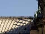 Paris 11102008-1230582-toit de Notre-Dame.jpg