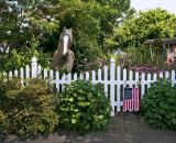 20100712-8933 Miffinville PA.jpg