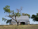 20120730-9377 Ellis Co TX.jpg