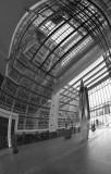 Den Haag in black&white