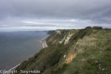 South West Coast Path, Beer to Budleigh, with Colin Ibbotson. Camp 5!