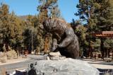 Bronz Bear