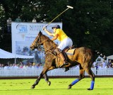 Pictures from Newport Polo