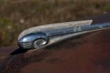 41 Dodge