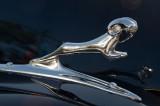 37 - 38 Dodge